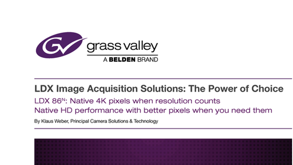 LDX Image Acquisition Solutions: The Power of Choice Whitepaper GVB-1-0593C-EN-GV Thumbnail